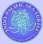 Turtle conservation group icon